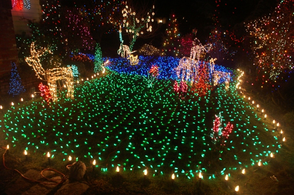 Holiday Lights 03