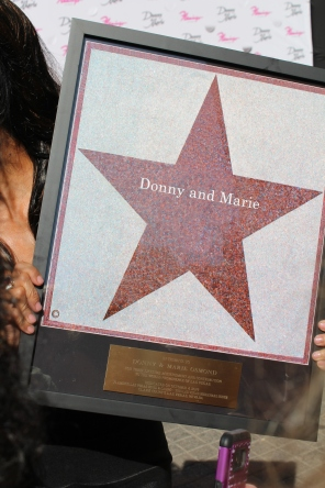 Walk of Stars plaque for Donny and Marie